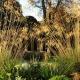 Gardens 2 Design, Beaconsfield